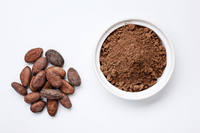 Large cocoa istock 000075821589 large